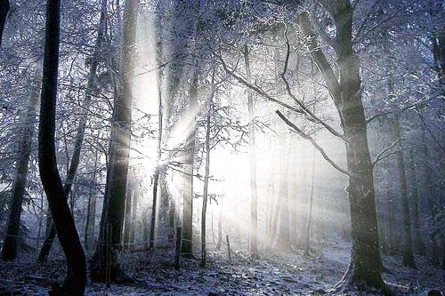 Bildergebnis für winterbild kostenlos