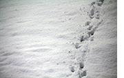 Winterstimmungen schneebilder kostenlos und lizenzfreie winterfotos - Schneebilder kostenlos ...